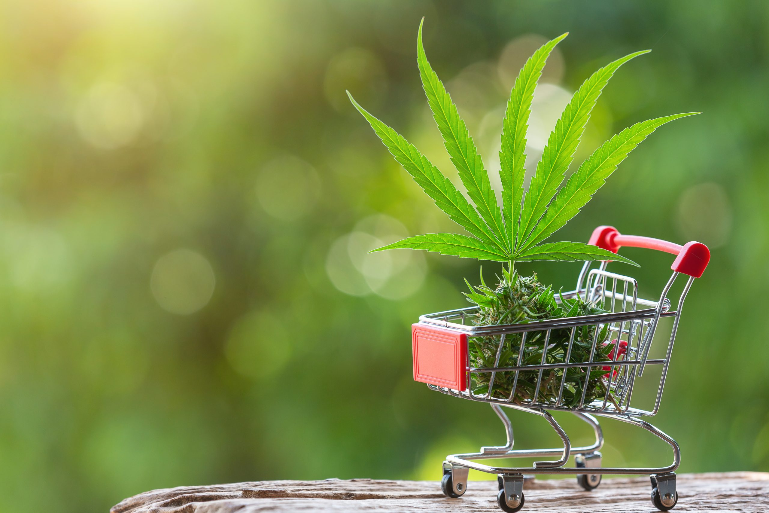 cannabis leaves in cart